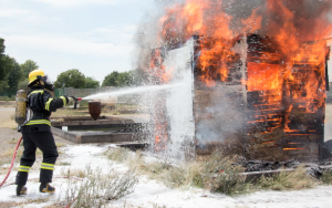 Casualty Adjuster in Albuquerque, New Mexico