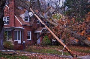 Casualty Adjuster in Gainesville, Florida