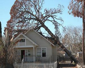 Property Adjuster in Columbus, Ohio