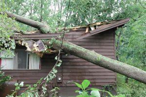 Property Adjuster in Jacksonville, Florida