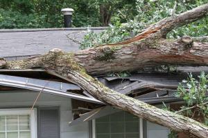 Property Adjuster in San Antonio, Texas