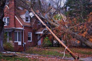 Property Adjuster in Washington